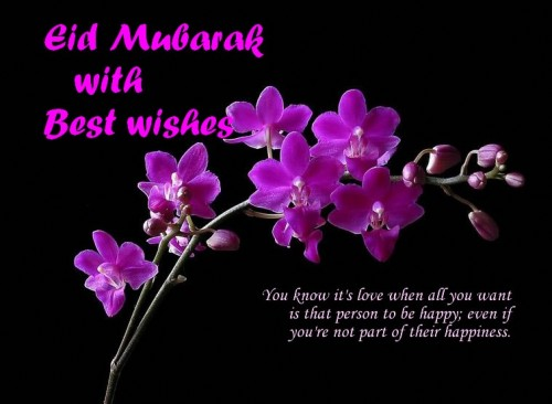 Beautiful eid greeting cards